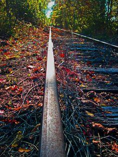 Abandoned Rail Along The Delaware River|Love's Photo Album