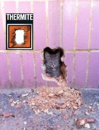 Thermite in nutshell