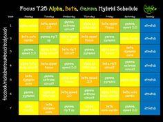 focus t25 alpha, beta gamma hybrid schedule facebook/rachelbierbaumbeachbodycoach
