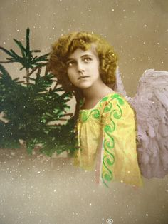Antique french Grete Reinwald postcard - Christmas Grete Reinwald, angel pine…
