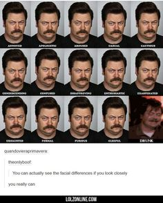 Ron Swanson - Facial Emotions