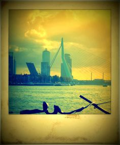 Monday - Things to do in Rotterdam