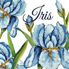 Iris-jp2586 Print By Jean Plout
