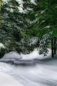 Зимний пейзаж, природа #зима #природа #пейзаж