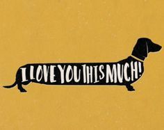 Quirky colourful dachshund sausage dog 'I Love You This Much!'