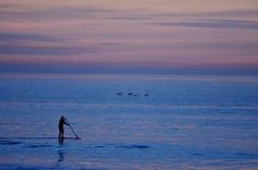 Stand Up Paddle Boarding in Oceanside, CA  By Judy Huskey Grant
