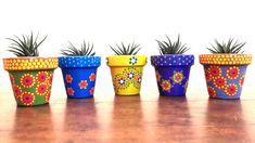 Nº 12 - Haworthia - A'cha Pots - Macetas pintadas a mano. achapots@hotmail.com