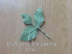 Эвкалипт из гофрированной бумаги DIY Tsvoric Corrugated paper eucalyptus - YouTube