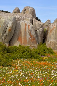 Using visualization, we can create a beautiful sanctuary in our mind -- South Africa, Spring's rocks Foto Nature, All Nature, Places To Travel, Places To See, Mountain Love, Jacob Zuma, Namibia, Le Cap, Out Of Africa
