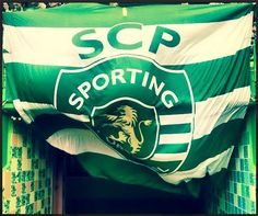 bandeiraalvalade Portugal Soccer, Personal Qualities, Best Club, Scp, Cristiano Ronaldo, Muscle, Football, Grande, Wallpapers