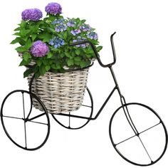 30.png ❤ liked on Polyvore featuring flowers, plants, bicycles, bike and garden