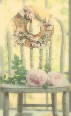 Rose in the garden...