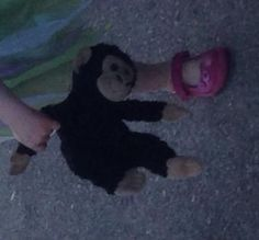 Lost at Budlake , devon on 05 Sep. 2016 by Elaine: BoBo is a medium sized black monkey with brown face , ears & hands. All Is Lost, Sep 2016, Pet Toys, Devon, Monkey, Teddy Bear, Medium, Black, Monkeys