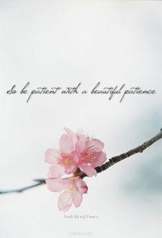 Beautiful Patience (Quran 70:5) from http://islamicartdb.com/