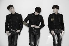 Double S 301 is a South Korean Trio formed under CI Entertainment in 2016. The Trio is a sub-unit of boy group SS501.