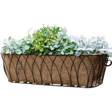 Nelumbo Rectangular Window Box