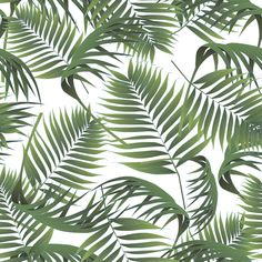 Crimean palm leaves pattern