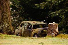 Old Rusty Car by Steve G. Bisig, via Flickr