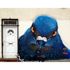 I think I want to come in but I'm not sure.... Big Blue Guard at the DOOR Photo by instagrafite
