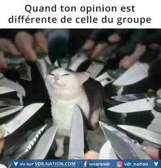 Quand ton opinion est différente de celle du groupe.