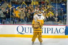 Quinnipiac University's men's ice hockey team retained its No. 1 ranking in the USCHO and USA Today/USA Hockey Magazine polls, and the Men's Division I Ratings Percentage Index. Our High Point Solutions Arena at the TD Bank Sports Center will be energized this Friday when the team takes on No. 13 Yale for the 11th annual Heroes Hat at 7:30 p.m. The game will be broadcast around the country on NBC Sports. Here, Boomer proudly holds the Cleary Cup following Saturday's game.