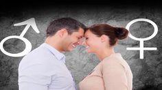 Proceso de Fertilización Para Quedar Embarazada