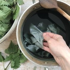 One of my favourite plants to dye with in the spring is the stinging nettle - it's one of the plants I most look forward to. The leaves give me a soft grey-green hue at this time of year (maybe you get a slightly different colour?) - the colour just feels so fresh and
