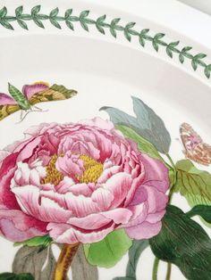 Portmeirion Botanic Garden Dinner Plates - 6 Asst'd White/floral 1972 #Portmeirion