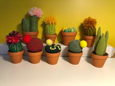 Cactus En Crochet, Felt, Amigurumi, Creative Workshop, Felting, Feltro