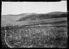 1935 Palos Verdes Rancho land.