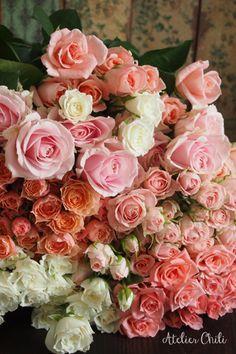 バラの香りに包まれて