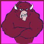 Bull animal graphics