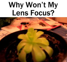 Why Won't My Lens Focus? Get all your focus questions answered. | Boost Your Photography