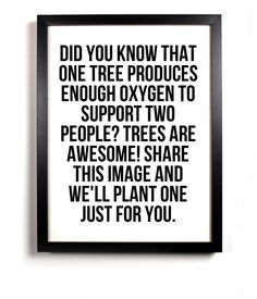 "Don't know if this is true, but the pin says ""For every repin, we will plant a tree! www.tentree.com"""