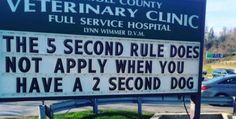 18 Brilliant Signs That Prove Vet Clinics Have a Great Sense Of Humor - World's largest collection of cat memes and other animals Funny Signs, Funny Memes, Hilarious, Jokes, Funny Quotes, Humor Quotes, Dog Memes, It's Funny, Sign Quotes
