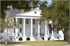 Hampton Plantation - McClellanville, South Carolina....