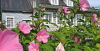 Lanaudière Plein Air, Plants, Tourism, Plant, Planting, Planets