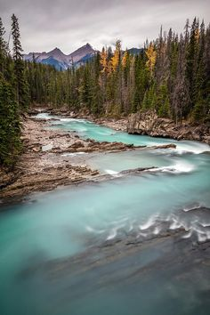 Kicking Horse River at Natural Bridge in Yoho National Park, British Columbia, Canada by Pierre Leclerc Photography Canada National Parks, Yoho National Park, Wonderful Places, Beautiful Places, Vancouver, Continental Divide, Natural Bridge, Beauty Around The World, Green Nature