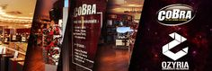 Cobra - HD pour tous soutient la communauté Ozyria émoticône heart Tentez de gagner un Casque #Gaming   sur leur page !!! | #Ozyria   #GiveAway   #JeuConcours
