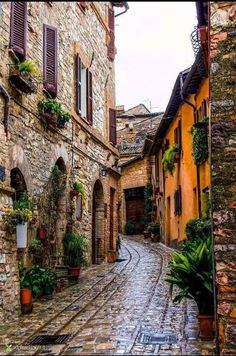 Travel Inspiration for Italy - Spello, Umbria, Italia Places Around The World, The Places Youll Go, Places To See, Italy Vacation, Italy Travel, Italy Trip, Italy Tours, Vacation Deals, Wonderful Places