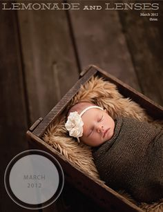 155 page online magazine about newborn photography and explains how a bunch of the shots are taken.