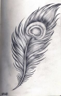 HellP Art - Peacock feather by on DeviantArt Peacock Sketch, Feather Sketch, Peacock Drawing, Feather Drawing, Peacock Art, Peacock Colors, Peacock Feather Tattoo, Feather Tattoo Design, Feather Art