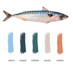 Mackerel color palette Clay Fish, Jellyfish Art, Red Fish Blue Fish, Fish Illustration, Fish Design, Driftwood Art, Color Of Life, Cat Art, Art Reference