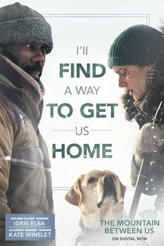 Will they survive? The Mountain Between Us. On Digital Now