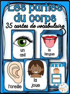 Cartes de vocabulaire sur les parties du corps.