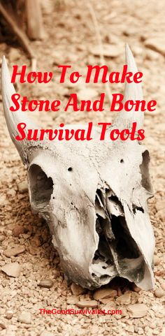This is a very handy skill to have. http://www.thegoodsurvivalist.com/how-to-make-stone-and-bone-survival-tools/
