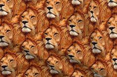 Minky Fabric, Cotton Fabric, Cotton Canvas, Canvas Fabric, Lions Photos, Custom Printed Fabric, Neckties, Polyester Satin, Swatch