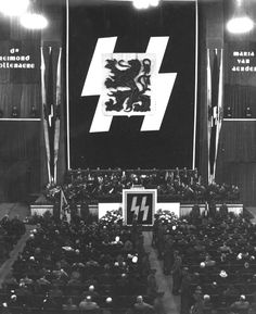 The Flemish heraldic lion rises from the double Siegrune. German Soldiers Ww2, German Army, Afrika Corps, Germany Ww2, Total War, The Third Reich, World War Two, Wwii, Aryan Race