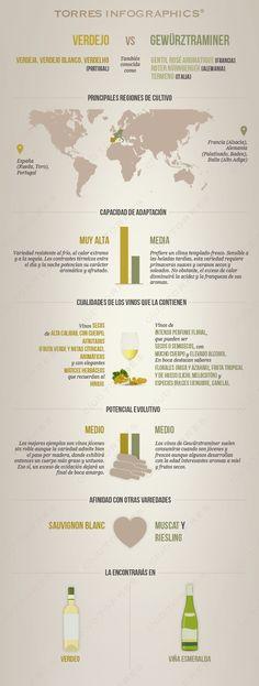 #Infografía: Verdejo Vs Gewürxtraminer. #Vino