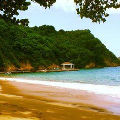 #ttsummerlovin Day 18: The #dock at #bluewatersinn. #tobago #carribean #vacation #island #paradise @tellthemsc emmacdavidson